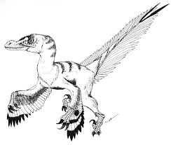 Velociraptor Mongoliensis By PaleoAeolos