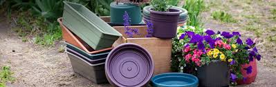 Gardening Pots, Planters & Accessories | Amazon.com Supermarket Store Prestashop Addons Pinnacle 5x2 Shiplap Wooden Log Departments Diy At Bq Unique Home And Garden Stores Online Backyard Escapes 10 Big Organization Ideas For Your Tiny Home Garden Stores Online 4 Best Design Ideas Unacart Global Shopping For Electronicshome Designing Sensory Desert Low Plans Large How To Plant Fniture Spruce Up Your Space This Spring Stylish New Lines Petaluma Bench Sale Pretoria Outdoor Decoration Catalogs Supplies Planting Gardening Compare Prices On Vegetable