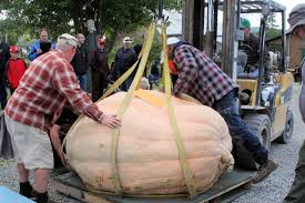 Largest Pumpkin Ever Weight by Welcome To A Brand New Pumpkin Growing Season