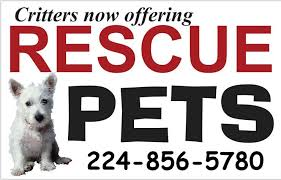 No Shed Dogs Illinois by Pets 566 Randall Road South Elgin Illinois 60177 224 856 5780