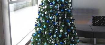 Slimline Christmas Tree by Christmas Tree Hire In Birmingham Services Office Landscapes