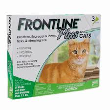flea treatment for cats the best flea treatment for cats for 2017 reviews