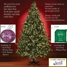 16 Best Scentsy Christmas Specials Images On Pinterest