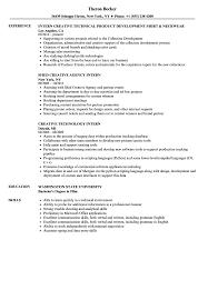 Download Intern Creative Resume Sample As Image File