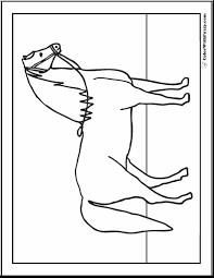 Printable Arabian Horse Picture