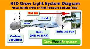 1000 Watt Hps Lamp Height by Mh Hps Grow Light Tutorial Plus Stealthy U0026 Cheap Ways To Exhaust