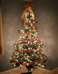 Longest Lasting Christmas Tree by Your Ultimate Guide For The Perfect Christmas Tree Tips