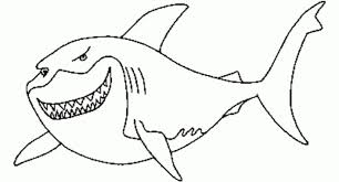 The Incredible And Attractive Great White Shark Coloring Page Regarding Your Property