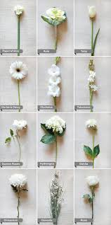 Learn The Names Of Some Beautiful Flowers So You Can
