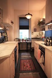 einrichtungsidee für schmale küche mit küchenzeile und