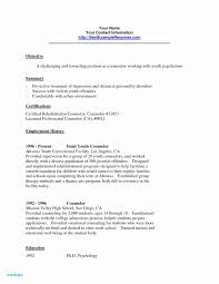 Youth Mentor Resume Examples For Counselor