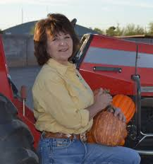 Mesilla Pumpkin Patch Las Cruces by Wstartup Farming For Agritourism Dollars