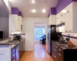 Purple Kitchen Design Idea