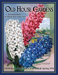 flower bulbs catalogs thin