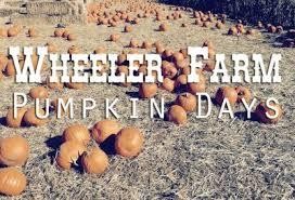 Hurricane Utah Pumpkin Patch by Pumpkin Days Presented By Wheeler Historic Farm Nowplayingutah Com