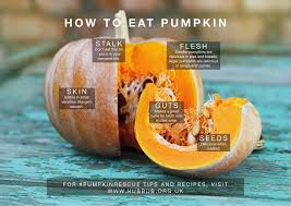 Bigs Pumpkin Seeds Nutrition by Hubbub Foundation How To Eat Pumpkin