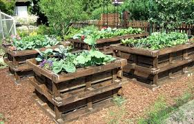 Pictures Gallery Of Pallet Garden Beds Share