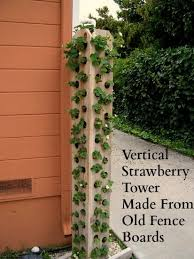 Strawberry Tower Made From Fence Boards Lettuces Arugula Spinach Herbs Of All