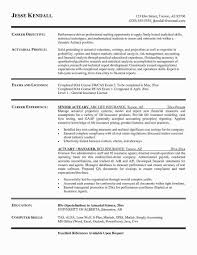 Computer Skills On Resume Sample Executive Summary Resume Elegant ... 2019 Free Resume Templates You Can Download Quickly Novorsum Sample Resume Format For Fresh Graduates Onepage Technical Skill Examples For A It Entry Level Skills Job Computer Lirate Unique Multimedia Developer To List On 123161079 Wudui Me Good 19 Tjfsjournalorg College Dectable Chemical Best Employers Want In How Language In Programming Basic Valid 23 Describe Your Puter