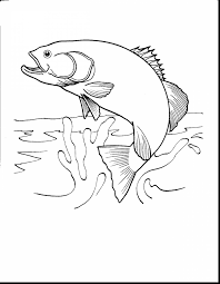 Excellent Realistic Fish Coloring Pages With Fishing And To Print