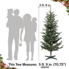 Christmas Tree 75 Ft by Amazon Com Ikea Fejka Best Artificial Fake Christmas Tree 5 Ft