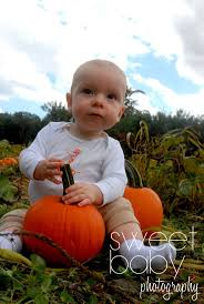 Bonita Springs Pumpkin Patch by 17 Best 9 Months Images On Pinterest Baby Pictures Children