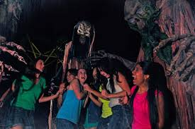 Halloween Busch Gardens 2014 by Florida Celebrating Halloween At The Theme Parks Miami Herald