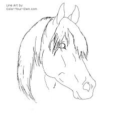 Free Printable Horse Head Coloring Pages Arabian
