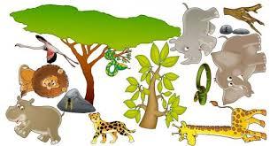 stickers jungle chambre bébé kit stickers animaux de la jungle et de la savane africaine pour
