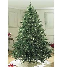 Barcana Christmas Tree For Sale by Extra Full Christmas Trees You U0027ll Love Wayfair