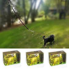 Amazon.com : Outdoor Drag Line / Long Leash For Dogs With Bungee ... Do Female Dogs Get Periods How Often And Long Does The Period Dsc3763jpg The Best Retractable Dog Leash In 2017 Top 5 Leashes Compared Please Fence Me In Westward Ho To Seattle Traing Talk Teaching Your Come When Called Steemit For Outside December Pet Collars Chains At Ace Hdware Biglarge Reviews Buyers Guide Amazoncom 10 Foot With Padded Handle For Itt A Long Term Version Of I Found A Rabbit Wat Do