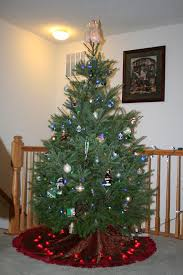 Sugar Or Aspirin For Christmas Tree by Real Christmas Trees Cheap Rainforest Islands Ferry