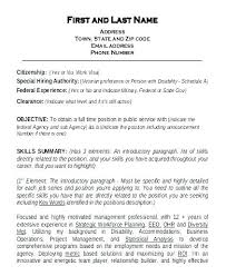 Resume Summary Statement Examples Software Engineer Sample Skill Professional For
