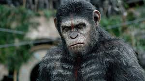 Dawn Of The Planet Of The Apes (2014) Directed By Matt Reeves ... Closer Look Dawn Of The Planet Apes Series 1 Action 2014 Dawn Of The Planet Apes Behindthescenes Video Collider 104 Best Images On Pinterest The One Last Chance For Peace A Review Concept Art 3d Bluray Review High Def Digest Trailer 2 Tims Film Amazoncom Gary Oldman