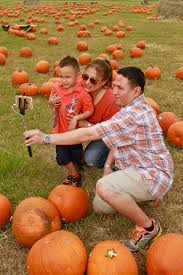 Free Pumpkin Patch In Katy Tx by First Taste Of Fall Means Pumpkin Patch Pilgrimage Houston Chronicle