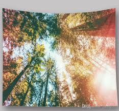 großhandel 2 29m 1 5m natürliche landschaft sternenhimmel foto wandbehang esszimmer dekorative malerei home kunst wandbehang strandtuch
