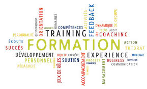 cabinet de conseil conduite du changement spécialiste de l analyse des organisations d entreprise et de la