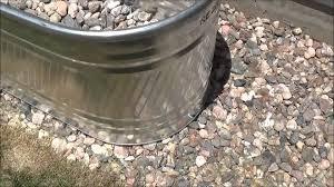 Horse Water Trough Bathtub by Diy Raised Garden The Easy Way Youtube