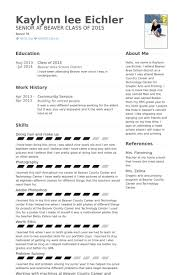 Community Service Resume Example