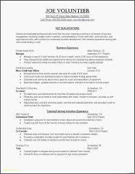 Sample Resume For Social Work Position Format Cv