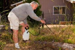 Monsanto Roundup Cancer Lymphoma Weed Killer Garden