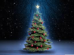Classic Christmas Tree 4K HD Desktop Wallpaper For Ultra TV