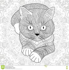 Plinth For T Shirts Coloring Pages For Adults Hand Painted Cat