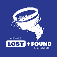 100 Lubbock Craigslist Cars And Trucks By Owner Lost And Found Pets Of TX Home Facebook