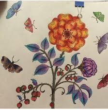 Garden Pictures Coloured Pencils Johanna Basford Coloring Books Butterflies