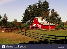 Red Barn White Fence On Stock Photos & Red Barn White Fence On ... Farm House 320 Acres Big Red Barn For Sale Fairfield The At Devas Haute Blue Grass Vrbo Fair 60 Decorating Design Of Best 25 Barns Ideas On Pinterest Barns Country And Indiana Bnsfarms Etc A In Water Color Places To Visit Nba Partners With Foundation For 2015 Conference I Lived A Dairy Farm When Was Girl Raised Calves 10 Michigan Wedding You Have See Weddingday Magazine