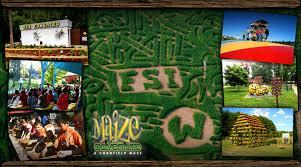 Corn Maze Pumpkin Patch Winston Salem Nc by World U0027s Largest Pumpkin Patch Corn Maze Halloween Attraction