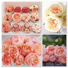 Flowers - Coupon Codes, Discounts And Promos - Wethrift.com 12 Best Florists In Singapore With The Prettiest Fresh Enjoy Flowers Review Coupon Code September 2018 Whosale Flowers And Supplies San Diego Coupon Code Fryouflowerscom Valentines Day 15 Off Fall Winter Flower Walls The Wall Company 1800flowerscom Black Friday Sale Free Shipping 16 Farmgirl Flowers Discount Code Off Cactus Promo Ladybug Florist Cc Pizza Coupons Discount Teleflorist Wet Seal Discount 22 1800 Coupons Codes Deals 2019 Groupon Unique Free Delivery Beautiful Fruit Of Bloom