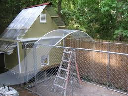 How High Should My Chicken Run Fence Be | BackYard Chickens Whosale Custom Logo Large Outdoor Durable Dog Run Kennel Backyard Kennels Suppliers Homestead Supplier Sheds Of Daytona Greenhouses Runs Youtube Amazoncom Lucky Uptown Welded Wire 6hwx4l How High Should My Chicken Run Fence Be Backyard Chickens Ancient Pathways Survival School Llc Diy House Plans Deck Options Refuge Forums Animal Shelters The Barn Raiser In Residential Industrial Fencing Company