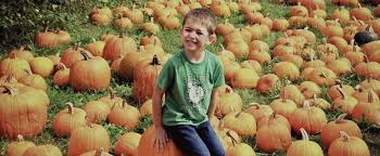 Pumpkin Picking In Waterbury Ct by A Guide And Map To Vermontt U0027s Best Pumpkin Patches And Pyo Pumpkin